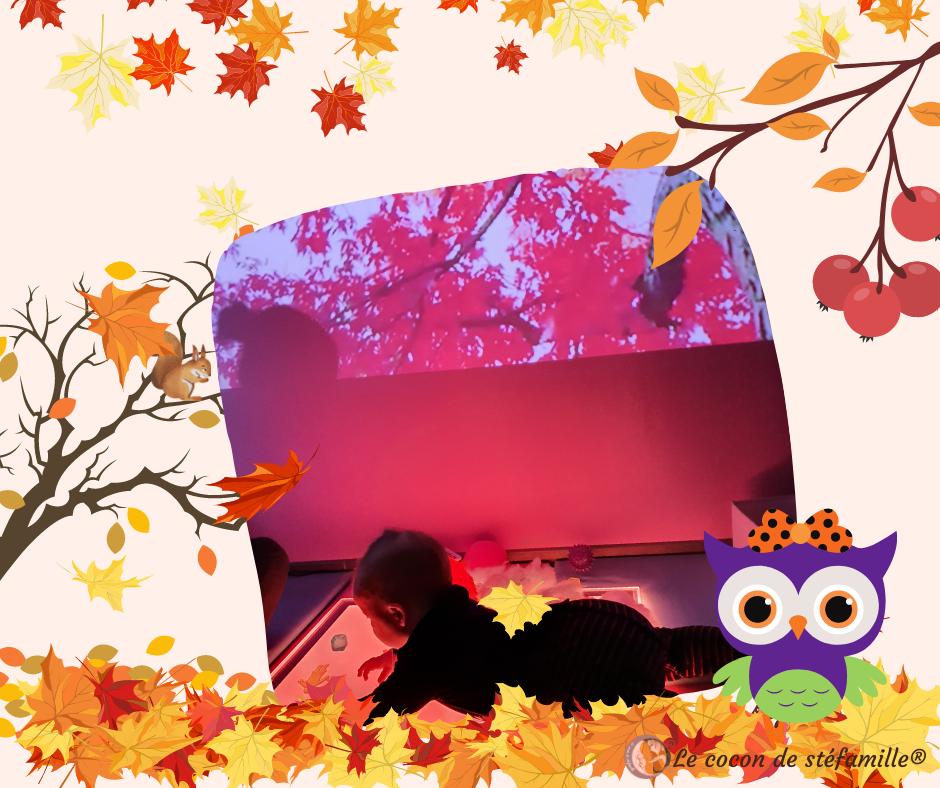 snoezelen,activité vacances automne, stage bébé, parascolaire Toussaint, animation bébé, activité enfant Bruxelles,salle multisensorielle, snoezelen bruxelles, snoezelen pour bébé, ateliers bébé, atelier parents enfant, ateliers parent bébé, snoezelen bébé, pédagogie alternative, ateliers Bruxelles, éveil bébé, activité bébé bruxelles